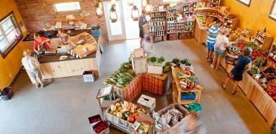 potager Emylou aliments biologiques estrie marché